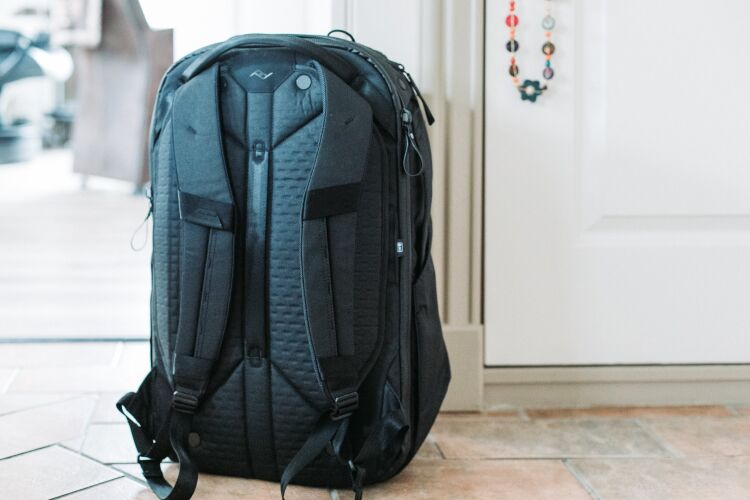 The backpanel of the Peak Design 45L Travel Backpack